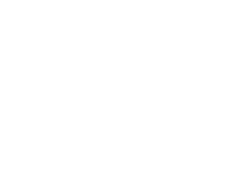 Rally Tron